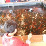 アミューズパーク仙台港で金魚釣り勝負!猫カフェもちょっとだけ