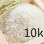 きぬむすめ 米 10kg 最安値比較